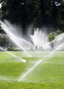Landscaping And Sprinkler Services